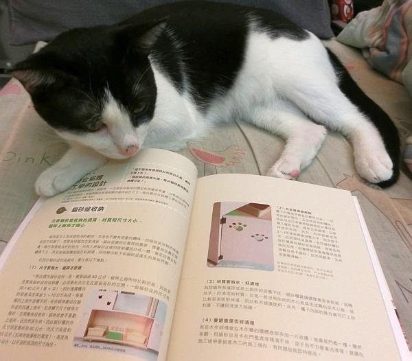 超幸福感!我和我的貓一起住--004