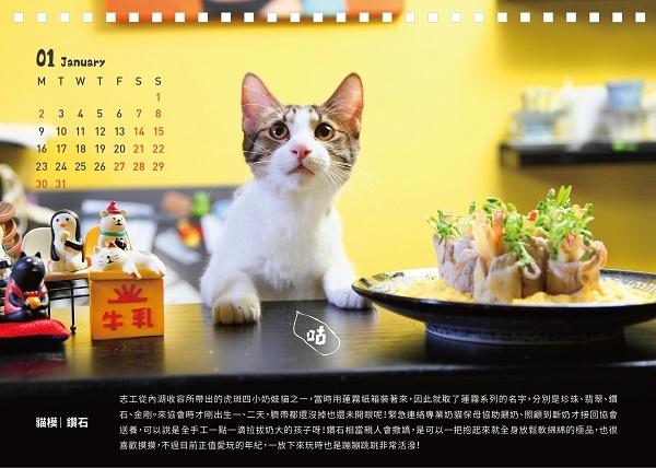 006--2017.公益.年曆.桌曆.週曆.貓.狗--SCPA--1.jpg