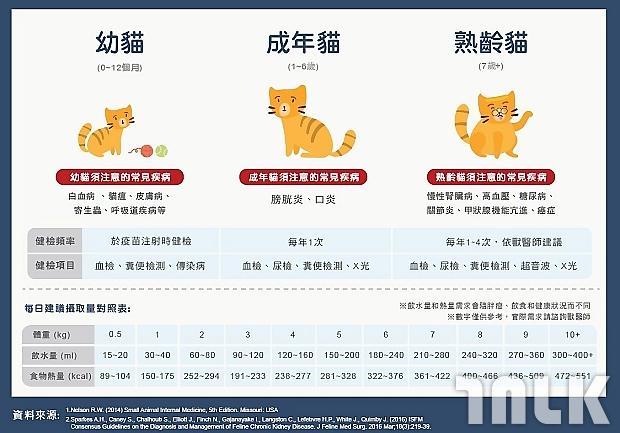 老貓,高年級毛孩實習班,慢性腎藏病_001.jpg