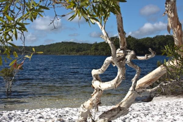 費沙島是遠離都市喧囂,回歸原始生態環境的好去處