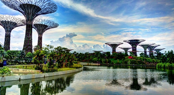 Supertree_Grove,_Gardens_by_the_Bay,_Singapore_-_2