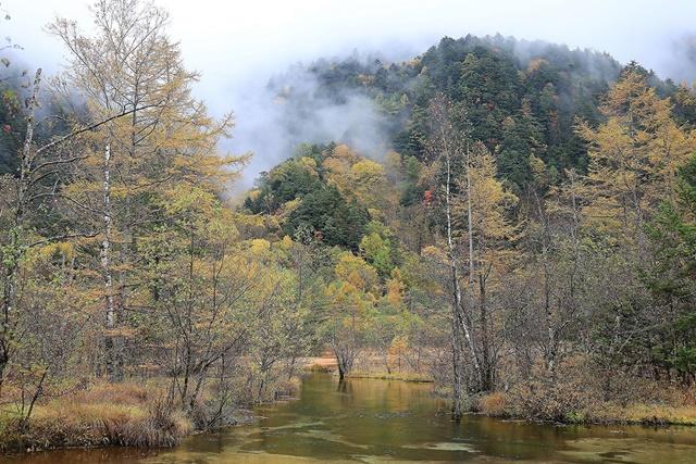 06田代池水質清澈,溪流、楓紅加上遠山構成唯美畫面。.jpg