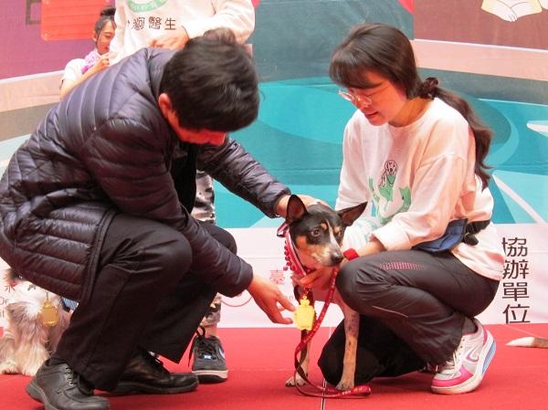 產業局長林崇傑(左)為狗醫生Dr.三丸頒發英雄動物勳章.JPG