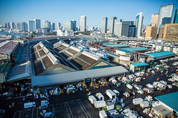 《築地市場:和食之心》劇照2.jpg
