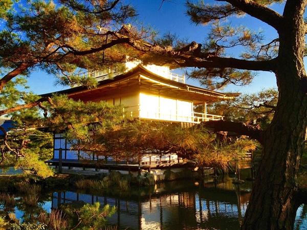 35-01閃著光輝的金閣寺.JPG