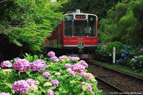滿滿戀愛感的日本夏日風物詩 4.jpg