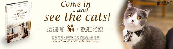 這裡有貓 (1).jpg