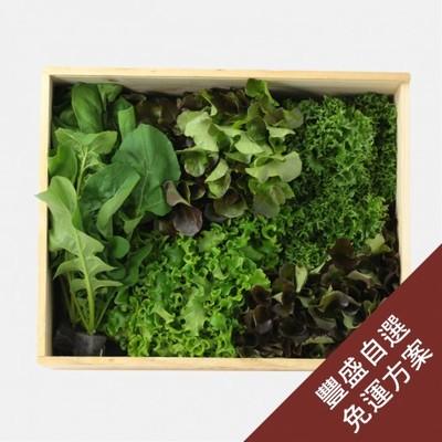 豐盛蔬食方案4週定期配送免運費