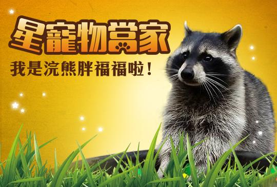 【壽司點點名】第十集:狸貓換太子?我是浣熊胖福福啦!